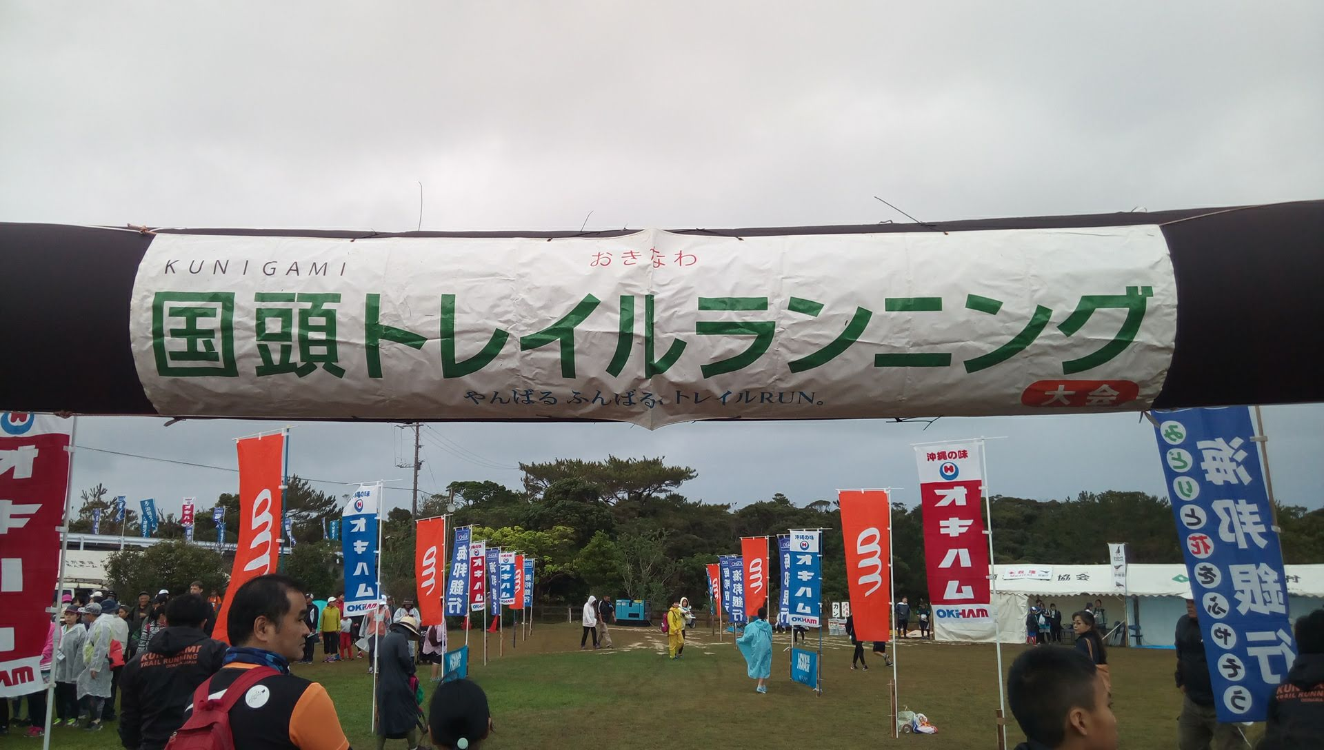 I participated in the Kunigami trail walk where we can fully enjoy the subtropical forest in Okinawa Yanbaru