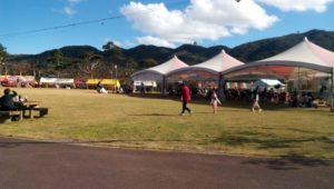 stalls and parks in the festival venue 2