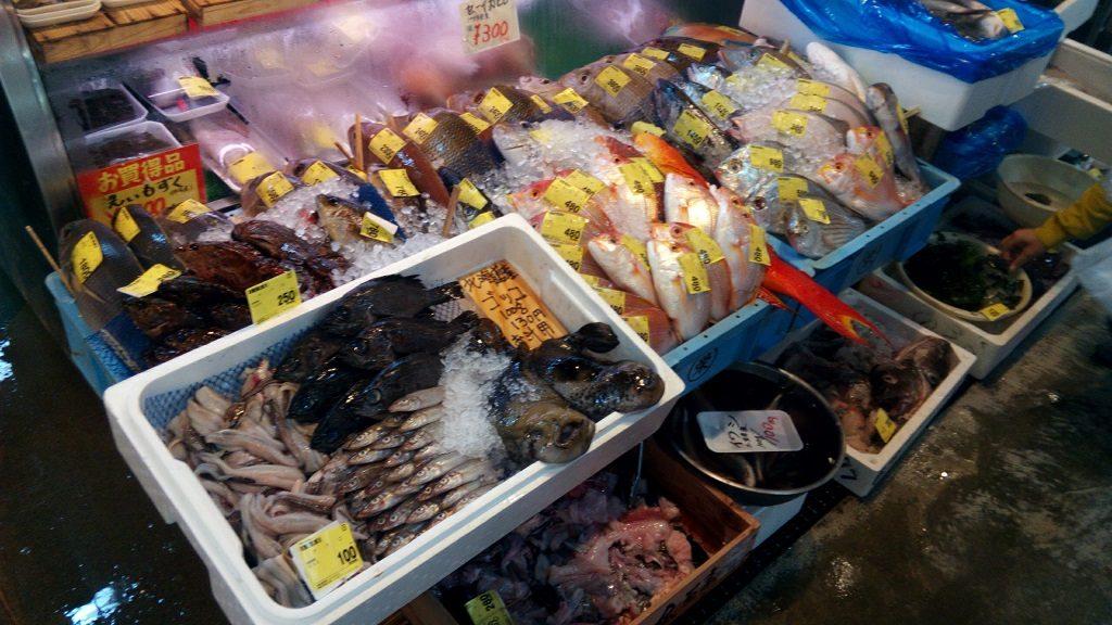 泊いゆまちで売られている新鮮な魚1