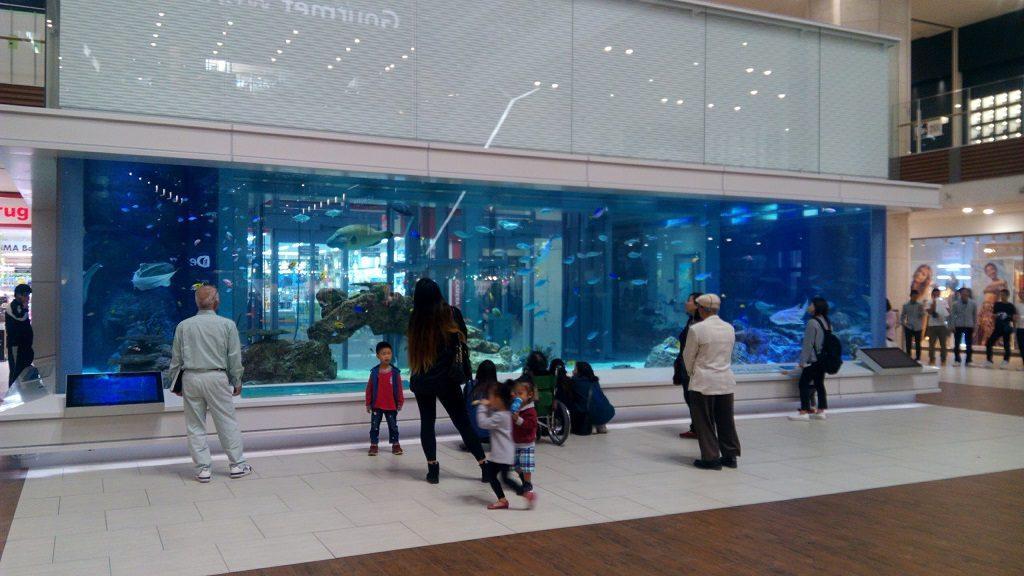 イオンモール沖縄ライカム1階の水槽