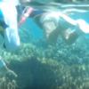 初心者でも小さな子供でも安全にお魚と一緒に泳げる崎本部ビーチを動画付きで紹介