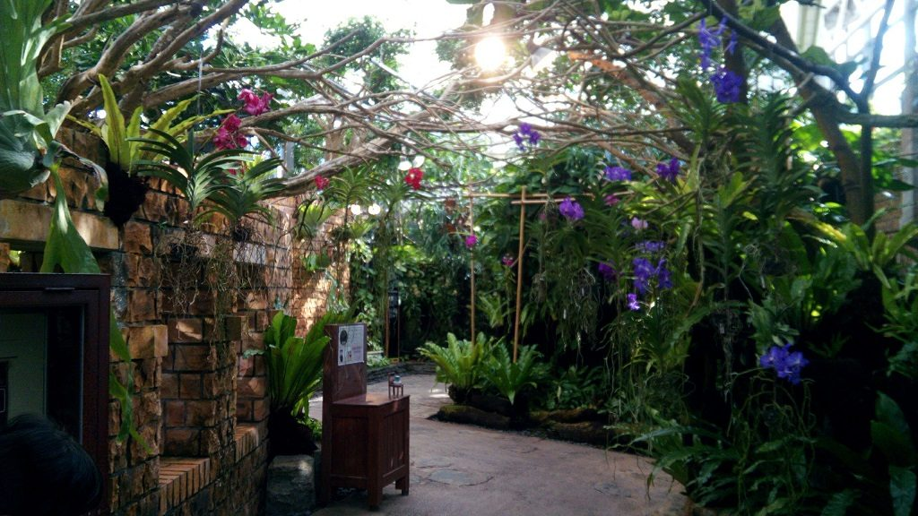 Greenhouse of tropical dream center