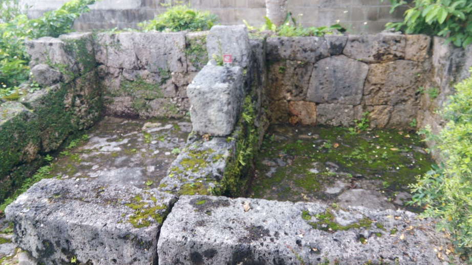 pig's ruins
