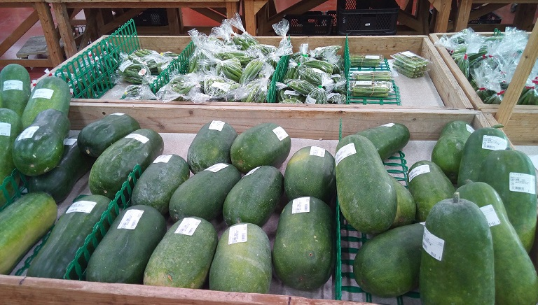 unique vegetables that are only found in Okinawa 1