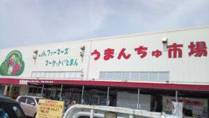 糸満市道の駅うまんちゅ市場にはお土産にピッタリなマンゴーも新鮮な魚介類も