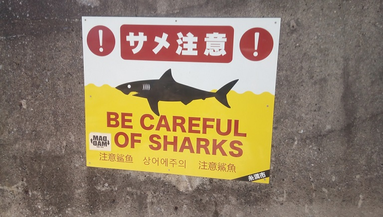 Shark attention sign