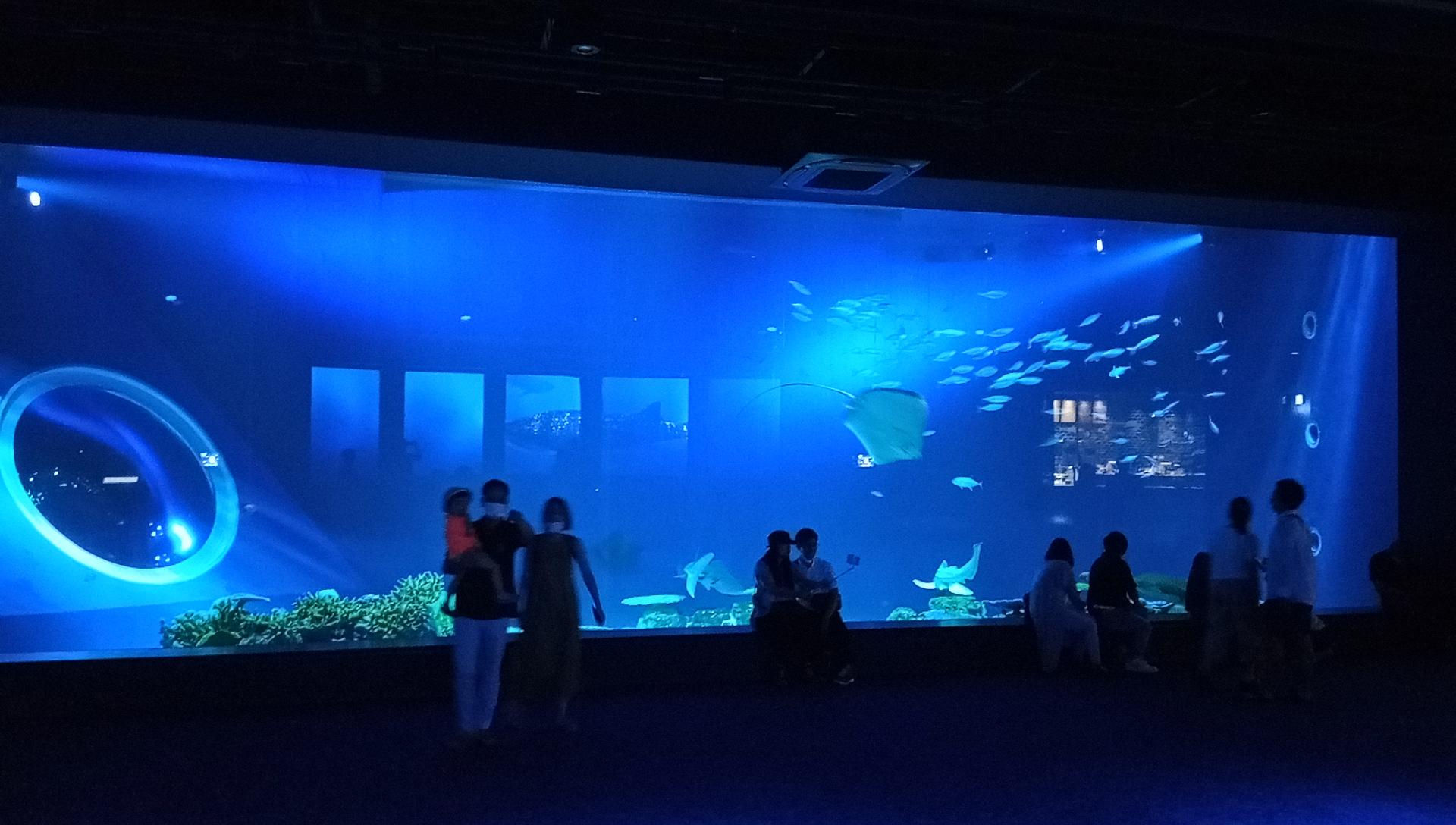 DMMかりゆし水族館の1階の大水槽